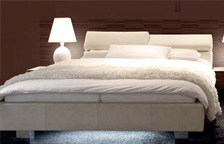 LEATHER B500 RANGE BED